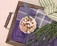 Gelato casalingo del cioccolato e della vaniglia con la caramella gommosa e molle, servire Fotografie Stock Libere da Diritti