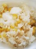 Gelato con l'arachide, il riso appiccicoso & la giaca immagine stock