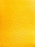 Gelato italiano delicioso del sorbete del mango Fotos de archivo
