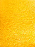 Gelato italien délicieux de sorbet de mangue Photos stock