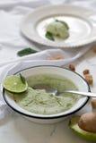 Gelato saporito fatto a mano pronto con l'avocado Servito con la menta fotografia stock