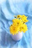 Gelb blüht hrysanthemums in einem Vase auf einem blauen Hintergrund Lizenzfreie Stockbilder