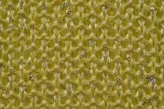 Gelb gestrickte Wolle Stockbilder