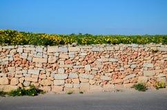 Gelb-orangee Wand des Steinziegelsteines entlang Asphaltstraße, Malta lizenzfreie stockfotos