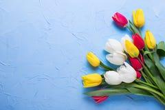 Gelb-, Rote und weißehelle Tulpen blüht auf dem gemaserten Blau Stockfotografie