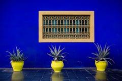 Gelb und Blau Stockfotografie
