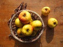 Gelbe Äpfel im Weidenkorb Stockbild