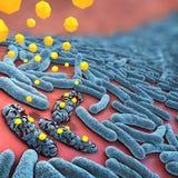 Gelbe Antibiotika, die Blau farbige Bakterien zerstören Lizenzfreies Stockbild