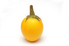 Gelbe Aubergine stockbilder