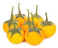 Gelbe Aubergine auf weißem Hintergrund stockbilder