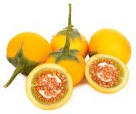 Gelbe Aubergine auf weißem Hintergrund lizenzfreie stockbilder