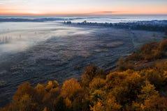 Gelbe Bäume des Herbstes und Nebel im Tal verwischen Kalte Morgenstimmung des Sonnenaufgangs Luftbrummenfotolandschaft stockfotografie