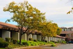 Gelbe Bäume und rote Dächer Lizenzfreie Stockfotos