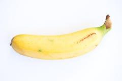 Gelbe Banane Lizenzfreies Stockbild