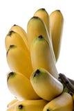 Gelbe Bananen getrennt Stockbilder