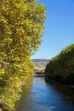 Gelbe Baumgrenze mit Fluss und Brücke im Herbst Lizenzfreie Stockfotos