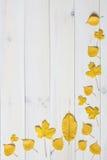 Gelbe Blätter auf einem weißen hölzernen Hintergrund grafisches Ebenenlage symb Stockbild