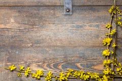 Gelbe Blüten auf einem hölzernen Kasten Lizenzfreie Stockbilder