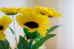 Gelbe Blumen auf einem hellen Hintergrund Lizenzfreies Stockbild