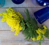 Gelbe Blumen der Mimose dienten auf Holztisch mit blauen Vasen lizenzfreies stockbild