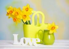 Gelbe Blumen des Frühlinges und Liebeszeichen Lizenzfreies Stockfoto