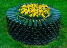 Gelbe Blumen in einem Bett von leeren grünen Weinglasflaschen, Abrau-Durso stockfotografie
