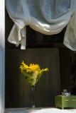 Gelbe Blumen im Weinglas-Vase Lizenzfreies Stockfoto