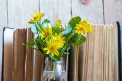 Gelbe Blumen und offenes Buch Blumen und Buch stockfoto