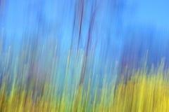 Gelbe Blumenunschärfe-Frühlingslandschaft Lizenzfreie Stockfotografie