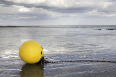 Gelbe Boje angeschwemmt auf Strand im nassen Sand Stockfotografie