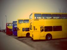Gelbe Busse Stockbilder