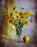 Gelbe camomiles und Zitrone Lizenzfreies Stockfoto