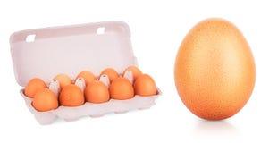 Gelbe Eier im Kasten Stockfotos
