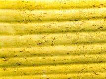 Gelbe Farbe und Beschaffenheit von alten Blättern der Bananenstaude Lizenzfreie Stockfotos