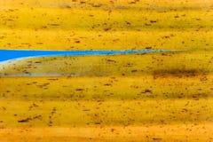 Gelbe Farbe und Beschaffenheit von alten Blättern der Bananenstaude Lizenzfreie Stockfotografie