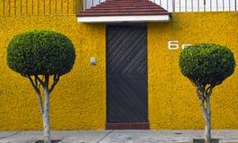 Gelbe Fassade stockbilder