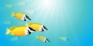 Gelbe Fische im Wasser stock abbildung