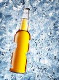 Gelbe Flasche Bier mit Tropfen Stockfoto