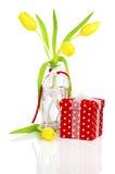 Gelbe Frühlingstulpenblumen mit roter Geschenkbox Stockfoto