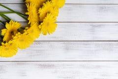 Gelbe Gänseblümchen auf einem weißen Plankenhintergrund mit Kopienraum stockfotografie