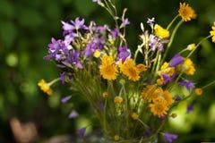 Gelbe Gänseblümchen und Glocken in einem Glas Lizenzfreies Stockbild