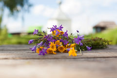 Gelbe Gänseblümchen und Glockenblumen auf den Brettern Lizenzfreie Stockbilder