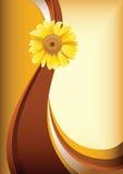 Gelbe Gänseblümchenblume lizenzfreie abbildung