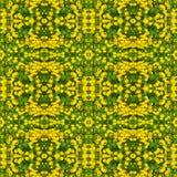 Gelbe Gänseblümchenblumen Lizenzfreie Stockfotografie