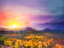 Gelbe goldene Gänseblümchenblumen des Ölgemäldes auf den Gebieten Sonnenuntergangmet Stockfoto