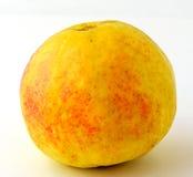 Gelbe Guajava-Frucht Stockfoto