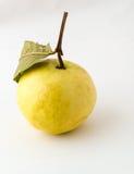 Gelbe Guave mit Blatt Stockbild