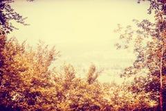 Gelbe Herbstunschärfelandschaft mit Bäumen und Himmel Stockbild