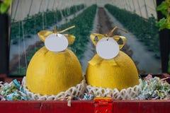 Gelbe Kantalupenmelone stockfoto