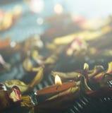 Gelbe Kerzen und plamennoi umgeben durch trockene Blumenblätter von Tulpen Stockfoto